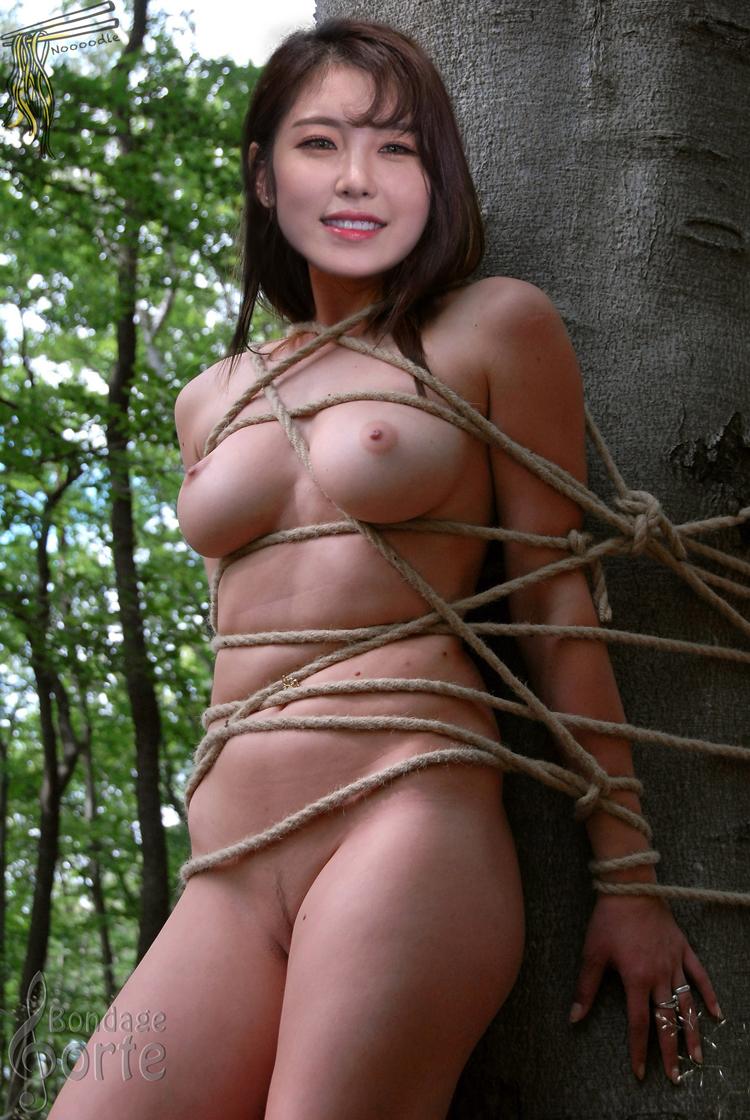 Hyosung nude fake