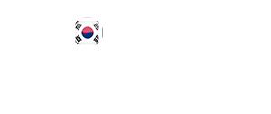 Koreanfakes